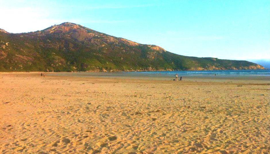 beachviewss