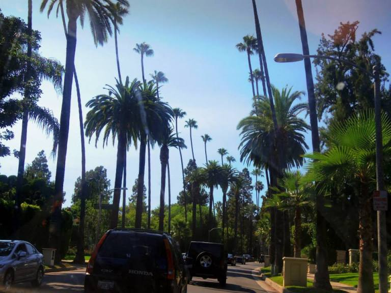 driving through beverly hills