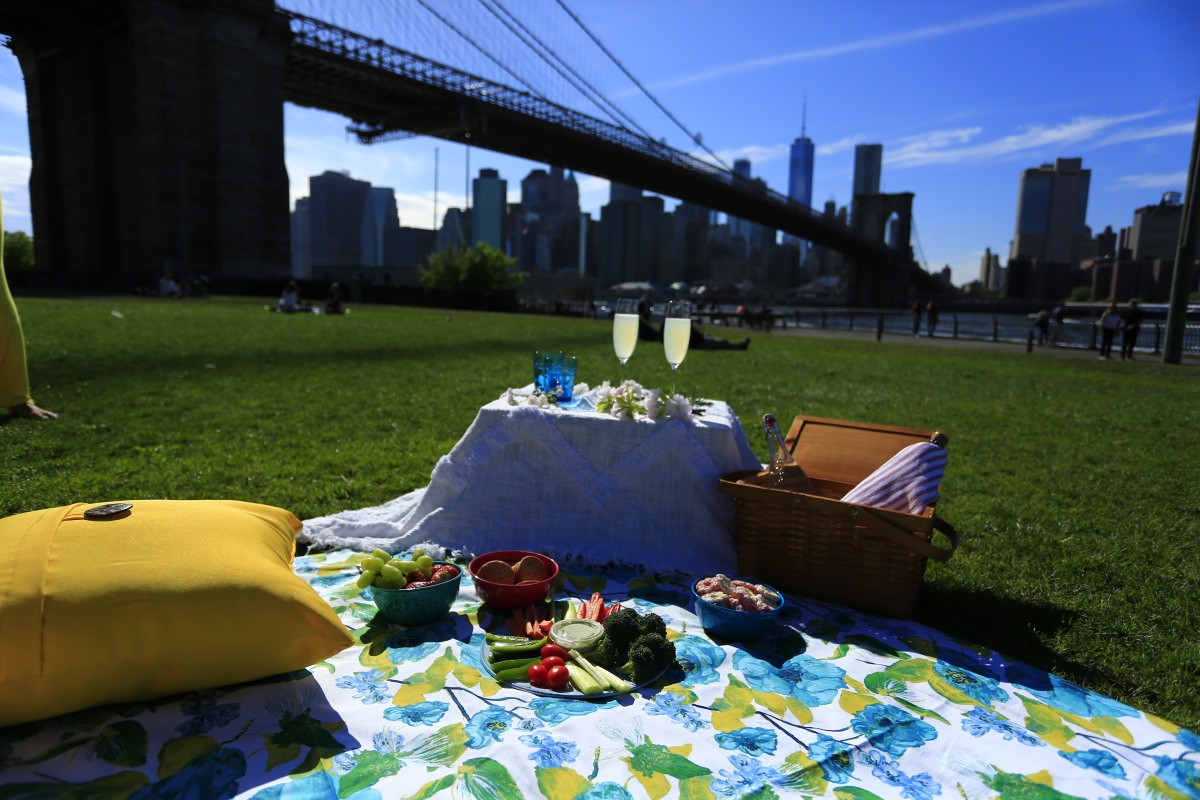 Picnic under the Brooklyn Bridge