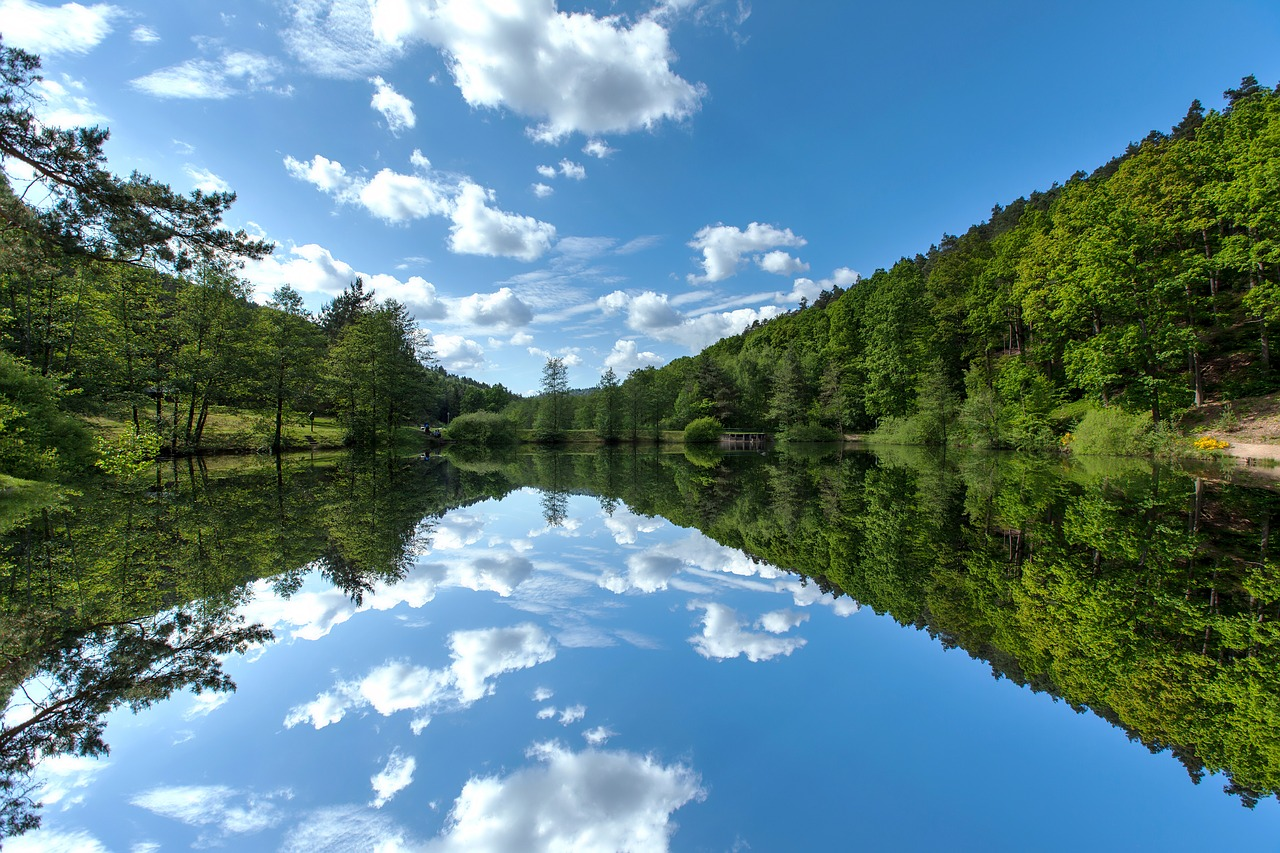 Reflections-Lake-Nature-Summer-Landscape-Water-3967142.jpg